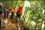 Low Ropes Course - Multi-Vine Traverse